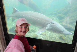 Sarah at Bonneville Dam Fish Hatchery
