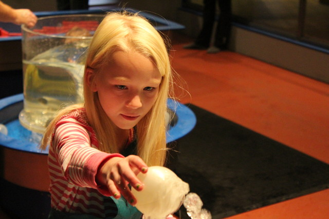 Emma at the OMSI